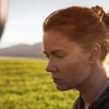 2017 Oscar Predictions: Nominations Roulette